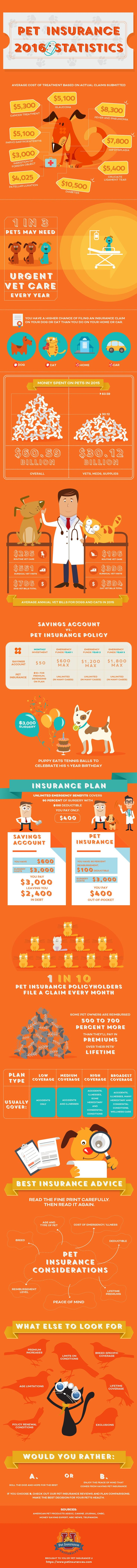 Find out everything you need to know about pet in surance using this beautiful infographic. Updated in 2016 with facts, statistics, data and funny, adorable artwork of cats and dogs.