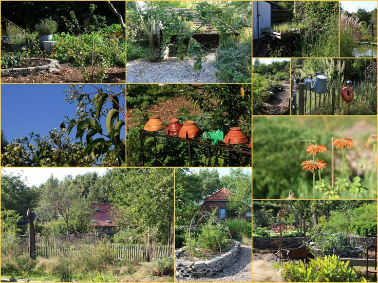 Tuinkronkels Veele. Hier wordt biologisch getuinierd en alles en elke plant heeft een nut. Zoals: #eetbaar #verfplant