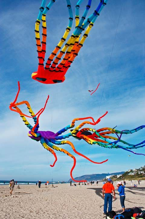 Kite Flying Festival, Oregon Coast, Lincoln City OR 101009Linc17V-3535-Kites