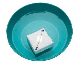 8 Science Experiments~  Check out this several other great ideas, plus this one that helps students study magnetic fields by making their own compass!