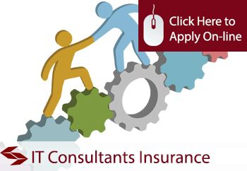 Professional Indemnity insurance for IT Consultants