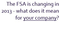 FSA (Financial Services Authority)