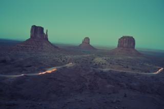 Download Desert Life Free Stock Photo