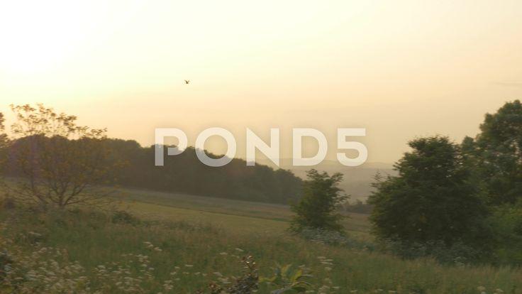 4K Birds Flying Over Countryside At Dusk Sunset Lens Flare - Stock Footage   by RyanJonesFilms