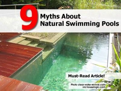 9 Myths About Natural Swimming Pools