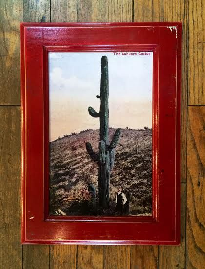 76 best Tucson Love images on Pinterest | Tucson, Cycle ...