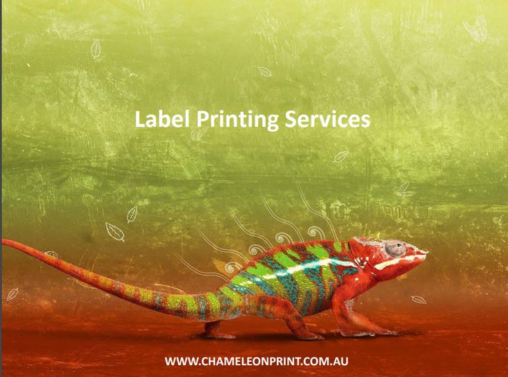 Because of our flexibility in label printing services, we are able to offer competitive prices and turnarounds on all types of custom labels.  We are able to produce it for you in small or large print runs. We also have thermal labels, vinyl labels, hot and cold foil printers, laminated, UV coated, flexographic presses and a range of digital printing that enable us to print in small or large quantities in a short space of time.