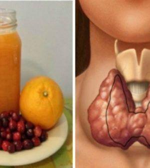 """Gyógyítja a májat, epét, gyomrot, nyelőcsövet - így készítsd el a cickafark """"gyógyszeredet""""!"""