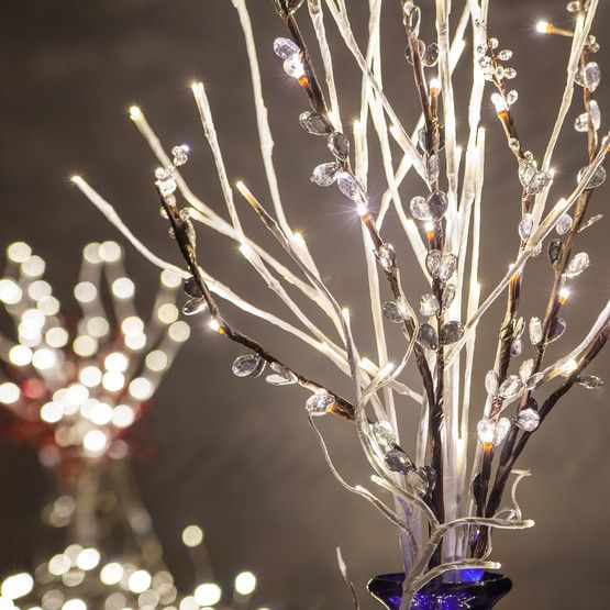 Create A Charming Home Accent Or Event Lighting
