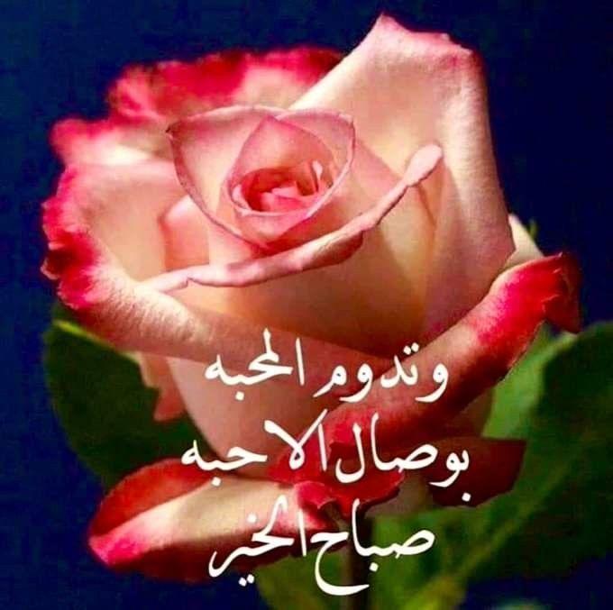 صباح الشهد والعسل صباح الحب والغزل صباح مصحوب بالامل صباح الورد يا عسل Flowers Rose Heart Ring