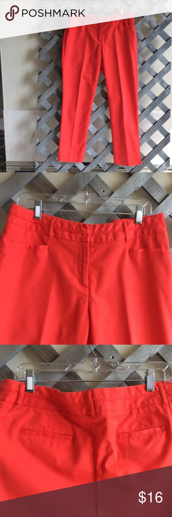Orange pants -RAFAELLA Orange pants 👖! Great for fall! Cotton/ polyester/ spandex zip front/ belt loops / pockets front and back. Like new- excellent condition! Rafaella Pants Trousers