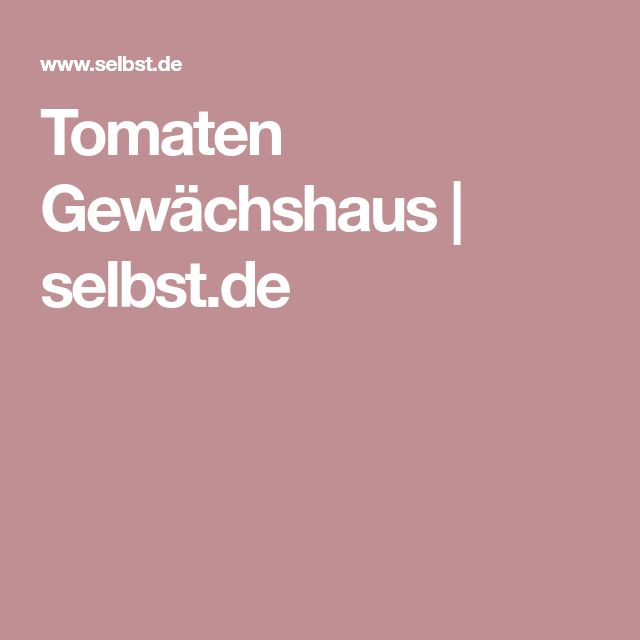 Tomaten Gewächshaus | selbst.de