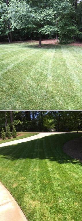 Bryan Elzey is committed in providing sod replacement and installation services. Aside from laying sod, he also offers landscaping, mulching, shrub trimming, and other lawn maintenance services.