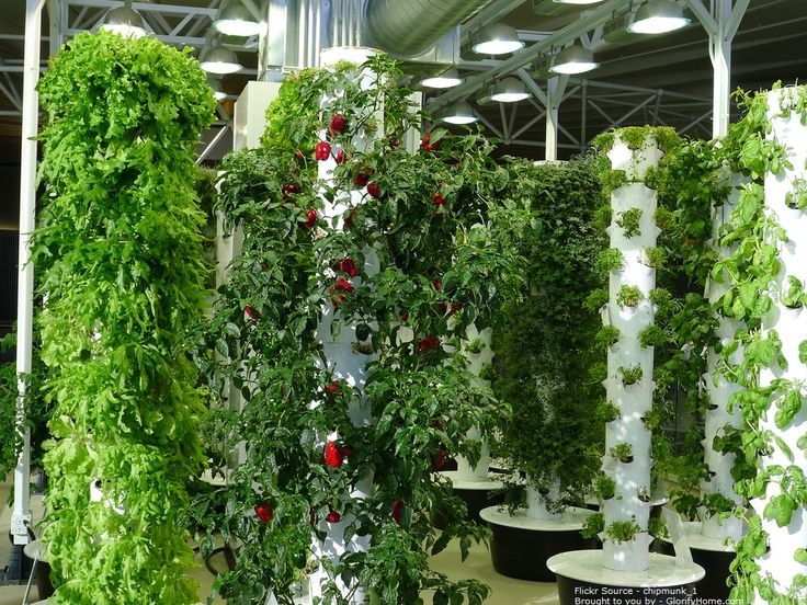 When outdoor space is limited, build an indoor garden or perhaps a terrace garden.  But whatever you do - Do it in Style!  This is exactly why vertical gardens are so much in demand.