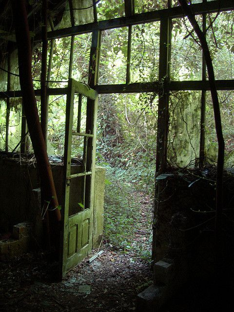 Looking out the door.....Where was this located? Looks very deep in a forest..