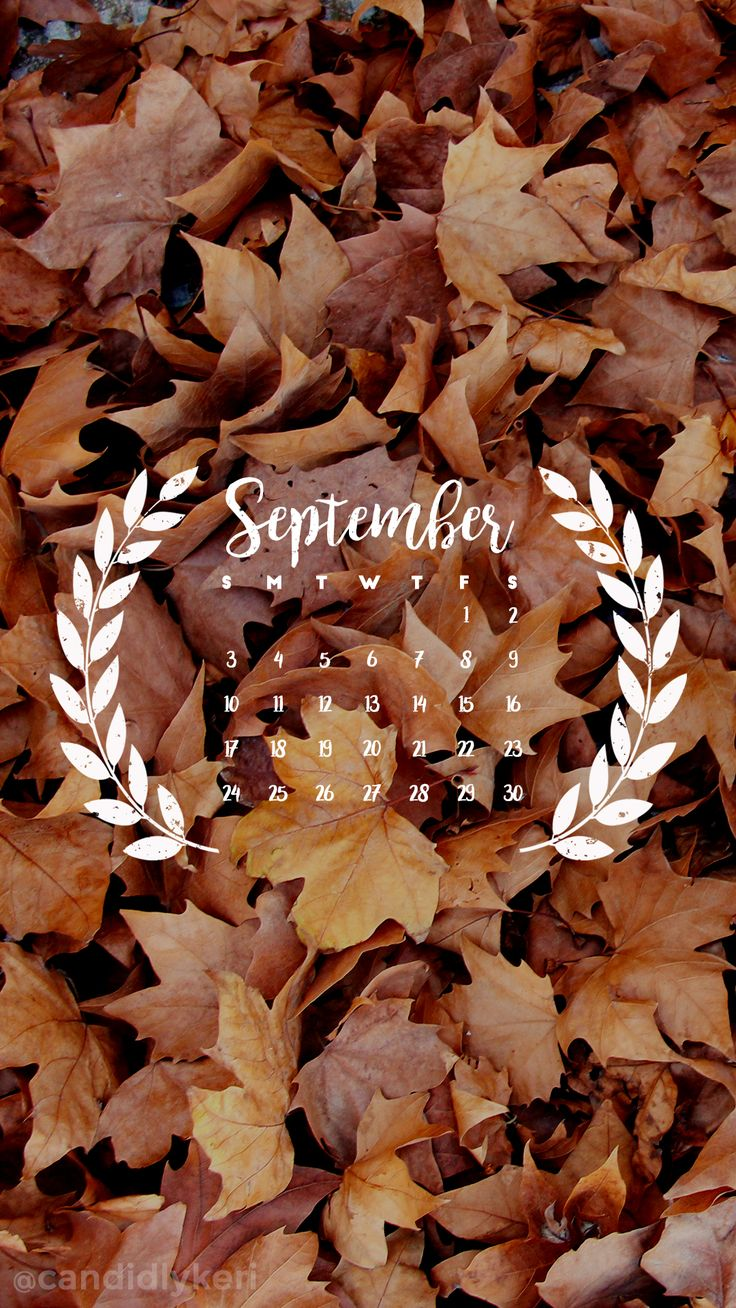 Fall leaves September calendar 2017 wallpaper you can download for free on the blog! For any device; mobile, desktop, iphone, android!