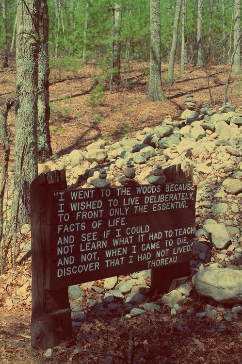ourdriedvoices:    thoreau    Checked that bit of literature off the list in 2007 while living in RMNP, Estes Park, CO…