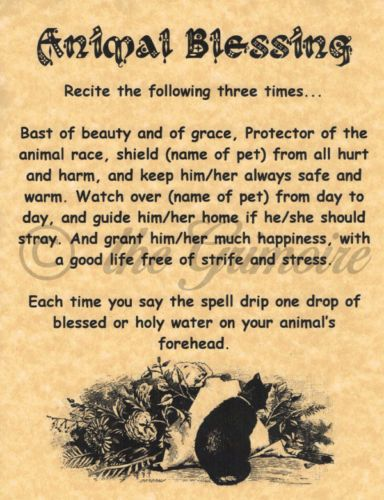 Animal-Blessing-Book-of-Shadows-Page-BOS-Pages-Witchcraft-Spell-Wicca-Poster