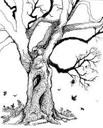 image result for fairy tree drawing