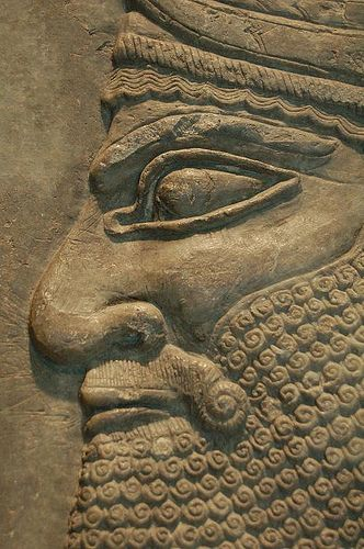 Detal of a relief showing  the head a  winged genius Neo -Assyrian,from  the Northwest of King Ashurnasirpal II (883-859  BC) at Kalhu  (Nimrud)Assyria,present day,Iraq The carving once decorated a  reception  room in  the Royal Palace built by Ashurnasirpal  II in his new capital city  on the banks of the Tigris river.