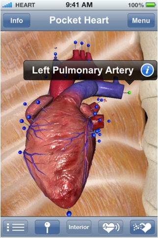 Website that list top apps for PE class. Pictured is an app for learning about the heart.