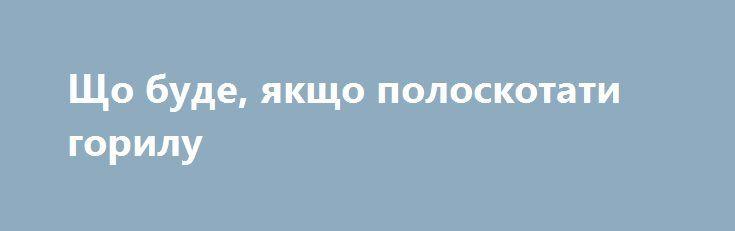 Що буде, якщо полоскотати горилу https://www.depo.ua/ukr/life/scho-bude-yakscho-poloskotati-gorilu-20171226699511  Малятко Лулінгу виявилося в природоохоронному центрі Grace в восьмимісячному віці, коли йогомати була вбита браконьєрами