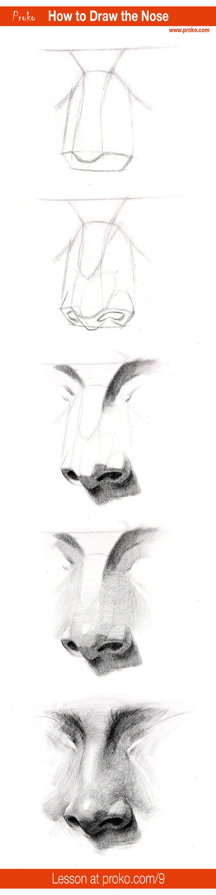 Draw A Realistic Nose With This Stepbystep Instruction Full Drawing  Lesson