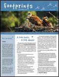 florida keys wild bird center $0,00