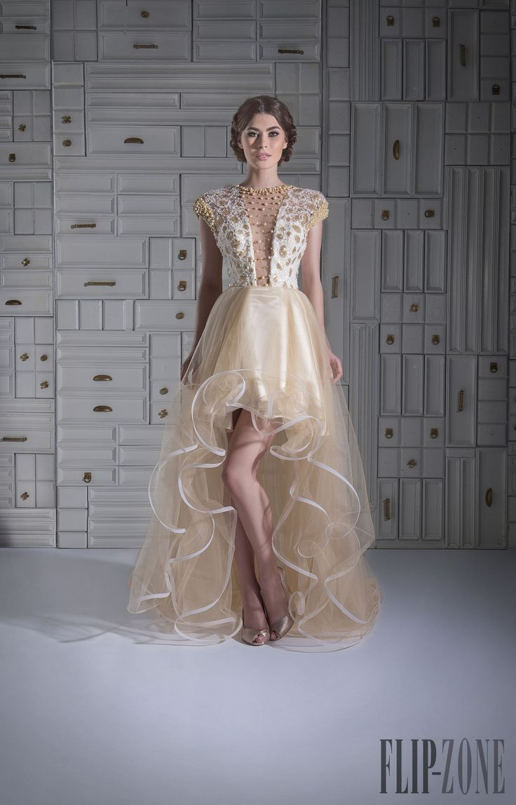 Chrystelle Atallah Spring-summer 2014 - Couture - http://www.flip-zone.net/fashion/couture-1/independant-designers/chrystelle-atallah-4745