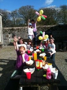 birthday party on farm