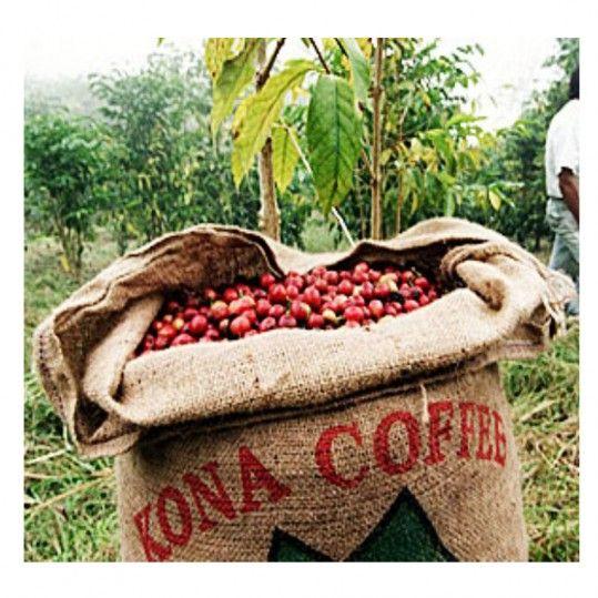 100% Kona Coffee ★ Hawaiian Kona Peaberry