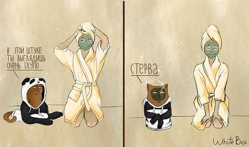 Девушка Панда и кот Барсик от White Box. - Be interesting, be literate