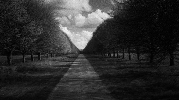 W.G. Sebald on film: Many steps to take | The Economist