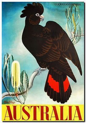 "Vintage Travel Poster CANVAS PRINT Australia Banksia & Black Cockatoo 24""X16"" - http://collectibles.goshoppins.com/advertising/vintage-travel-poster-canvas-print-australia-banksia-black-cockatoo-24x16/"