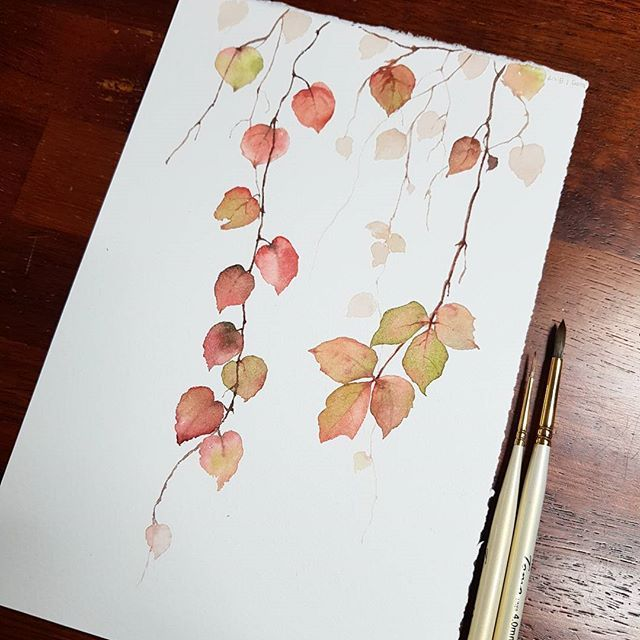 I like the simplicity of these beautiful leaves
