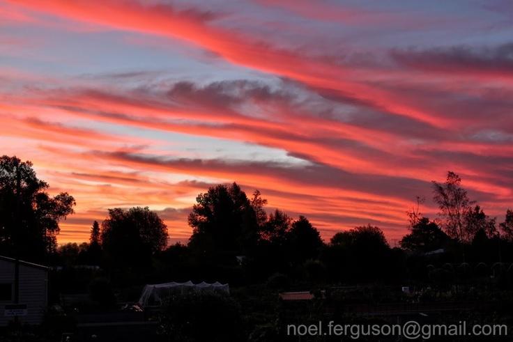 Braeside Sunset