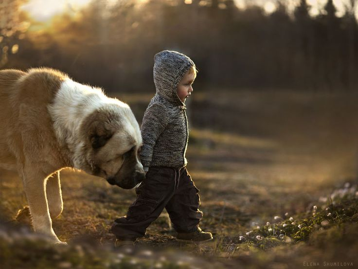 Little man and his dog  animal-children-photography-elena-shumilova-18
