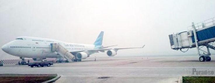 Enam Kota di Tiongkok Minati Penerbangan Carter Garuda
