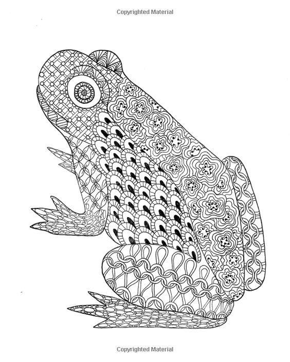 124 besten coloring frog Bilder auf Pinterest | Zentangle