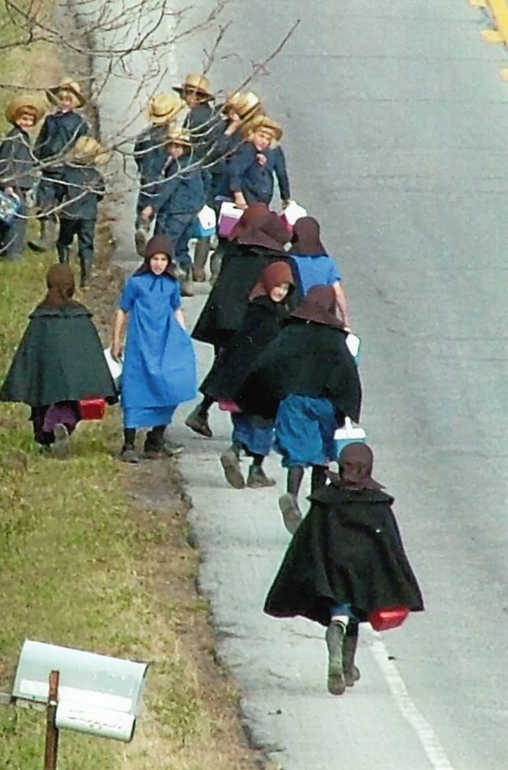 the amish society and culture As compared to the rate of change in the culture surrounding the amish   society 2 the term amish-mennonite is used in this article to refer to the group  of.