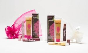 Groupon - deVine Lip Gift Set with Lip Shimmers and Lip Shine in Online Deal. Groupon deal price: $12.99