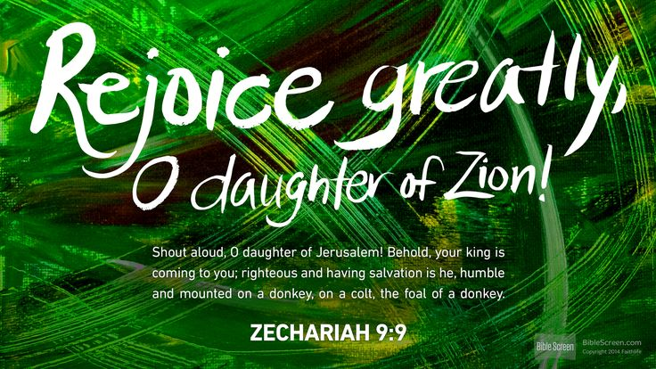 I'm reading Zechariah 9:9
