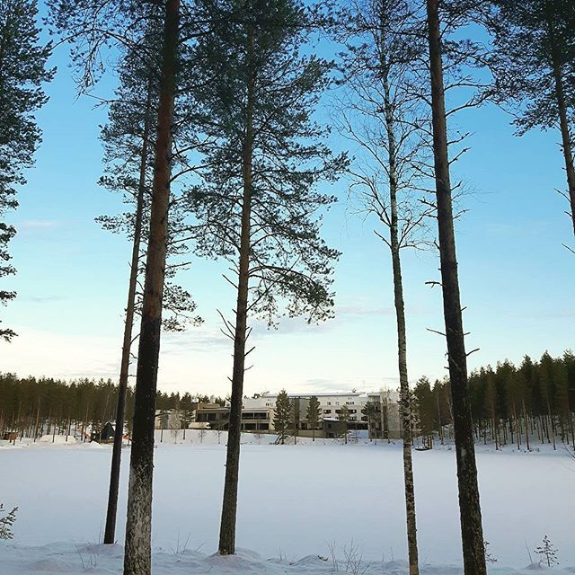 Have a wonderful Saturday 😊 #rokua #visitrokua #ski #winter #thisisfinland #outdoors #xcountryskiing