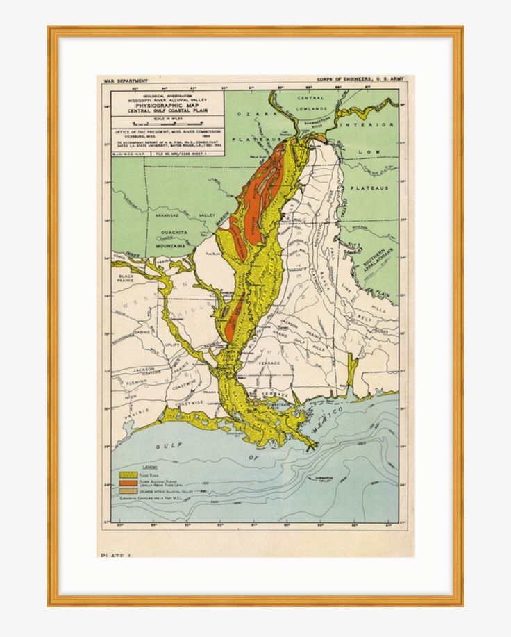 Fisk Maps / Louisiana / Plate 1
