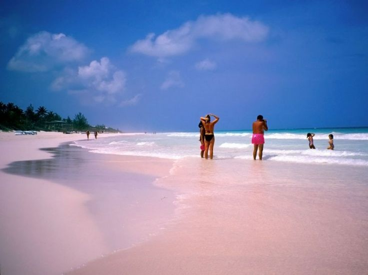 Pink Sand Beach  Eleuthera, Harbour Island, Bahamas