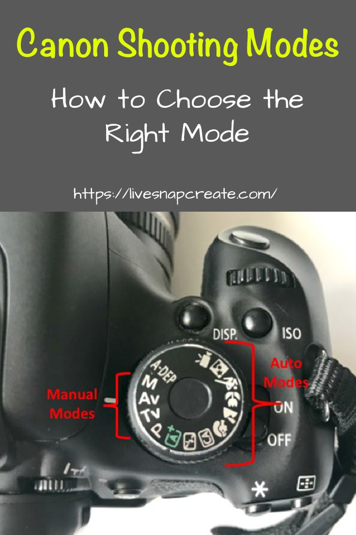 Grundlegendes zu Canon DSLR-Kameramodi