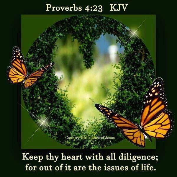 145 Best Proverbs KJV Images On Pinterest