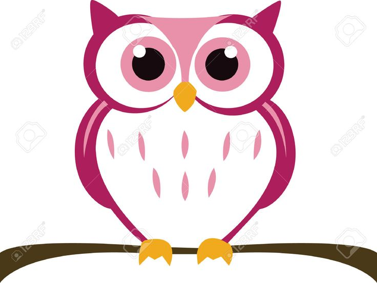 owl vector - Google Search