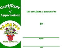 107 best su ideas images on pinterest girl scout daisies daisy girl scout award certificate outstanding leader award for girl scouts with modern green and orange yadclub Images