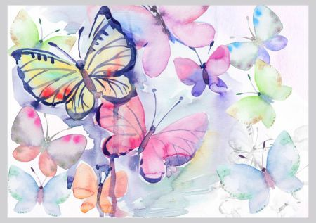Victoria Nelson - Butterfly Watercolour Copy
